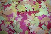 Cranberry Leaves Bath Tub Confetti